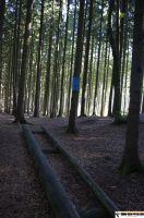 waldsportpark-ebersberg55