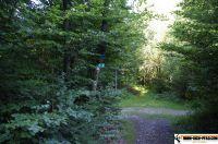 waldsportpark-ebersberg62