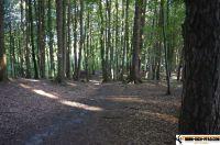 waldsportpark-ebersberg57