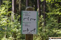 trimm-dich-pfad-sulzbachrosenberg20