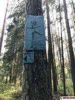 trimm_dich_pfad_Leerstetten_38