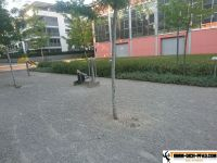 Bewegungsparcours_Ulm_13