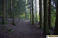 trimm-dich-pfad-kollnburg29