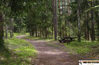 trimmdichpfad-kulmbach13