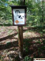 Waldsportpfad_Reilingen_19