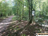 Waldsportpfad_Reilingen_05