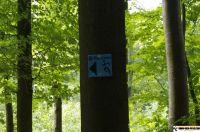 trimm-dich-pfad-neustadt11