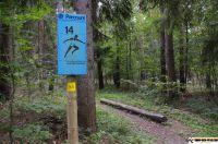 trimm-dich-pfad-neustadt39
