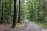 trimm-dich-pfad-neustadt45